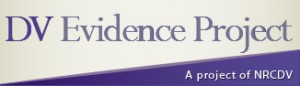 DV Evidence Project logo